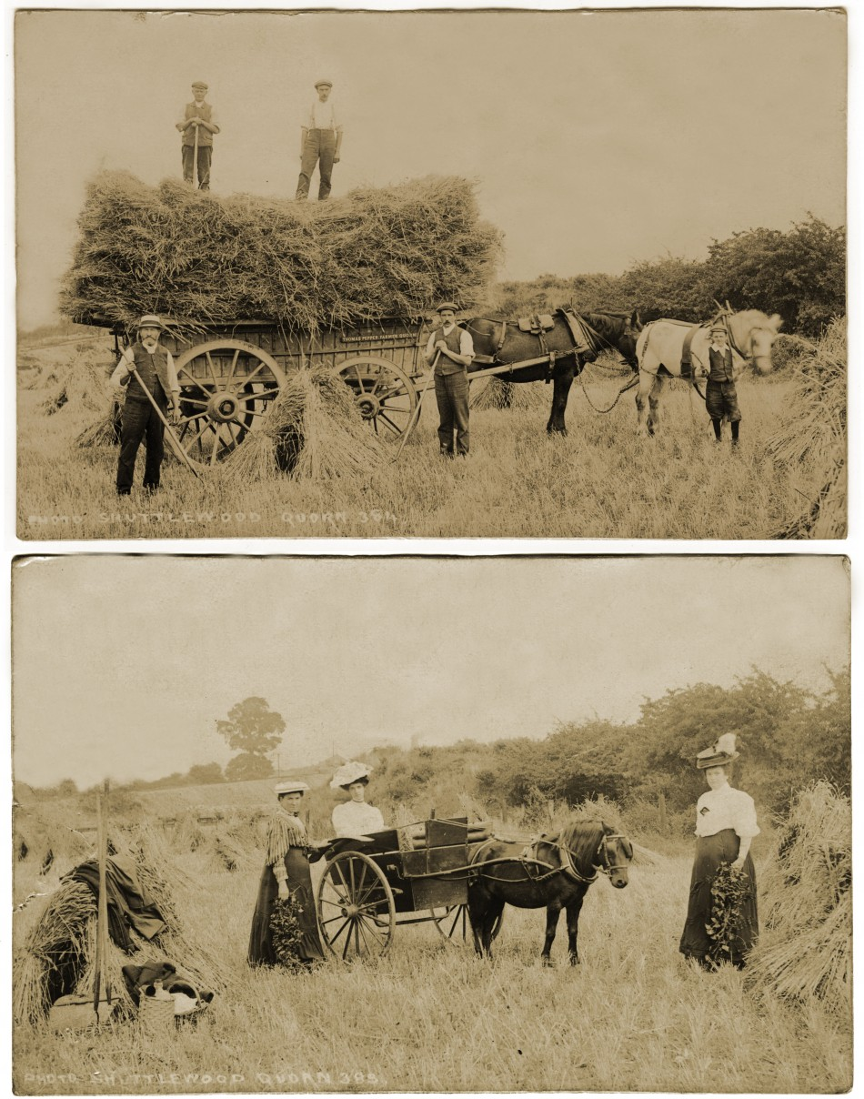 Harvest at Home Farm, Quorn, early 1900s